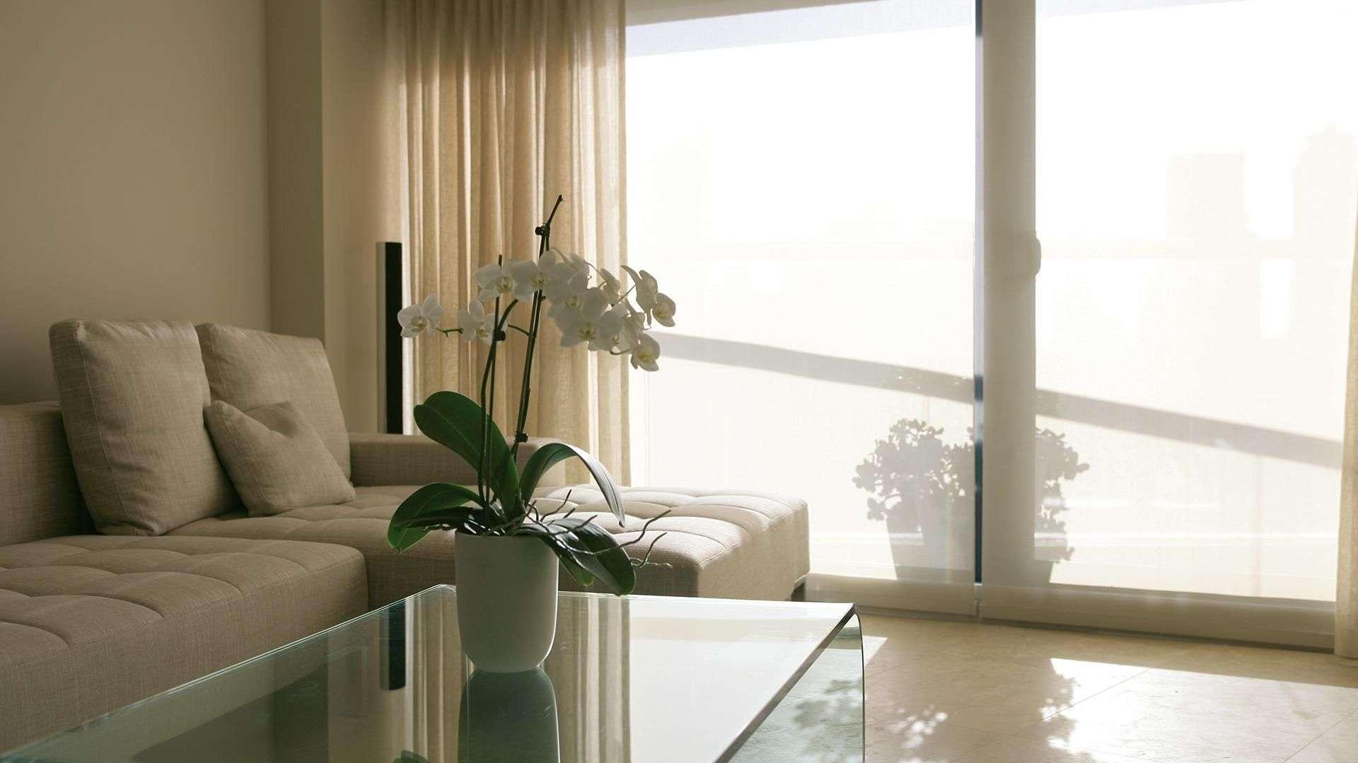 Wohnzimmer mit bodentiefen Fenstern mit Gardinen davor