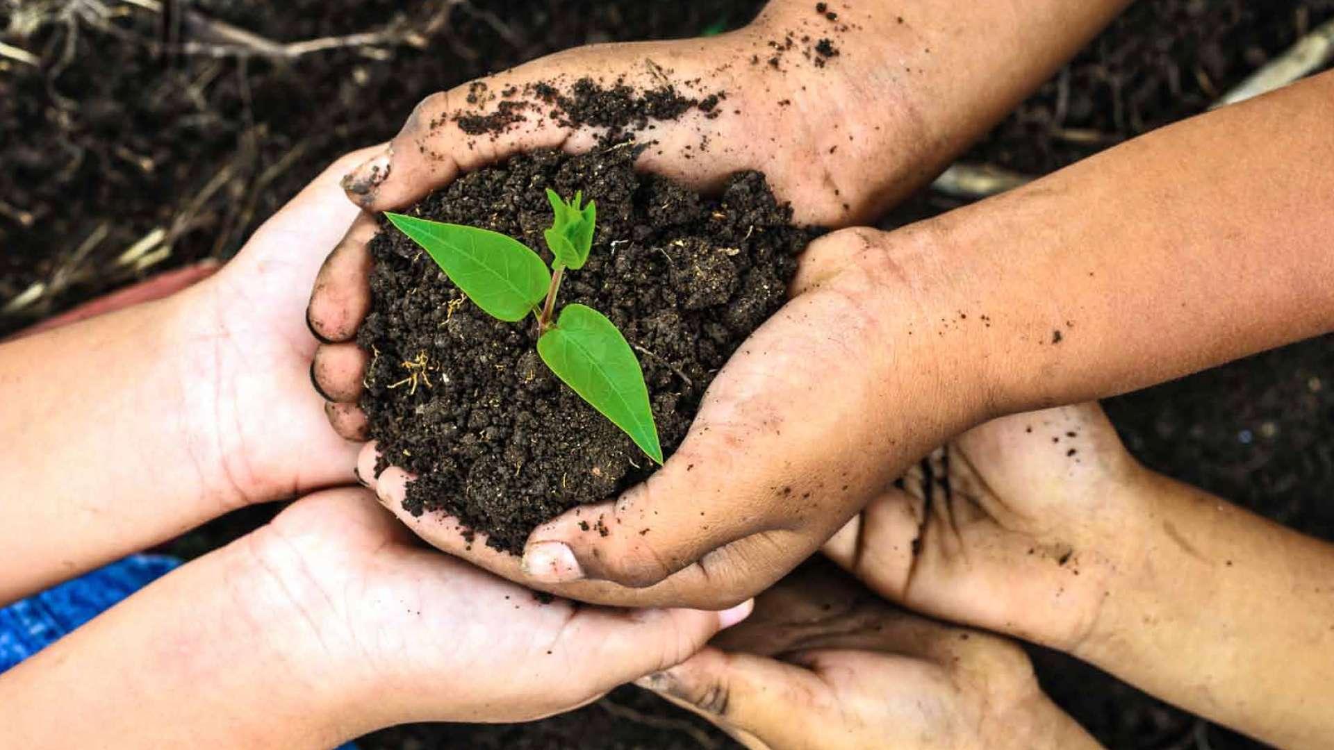 Kinderhände, die Erde in der Hand halten