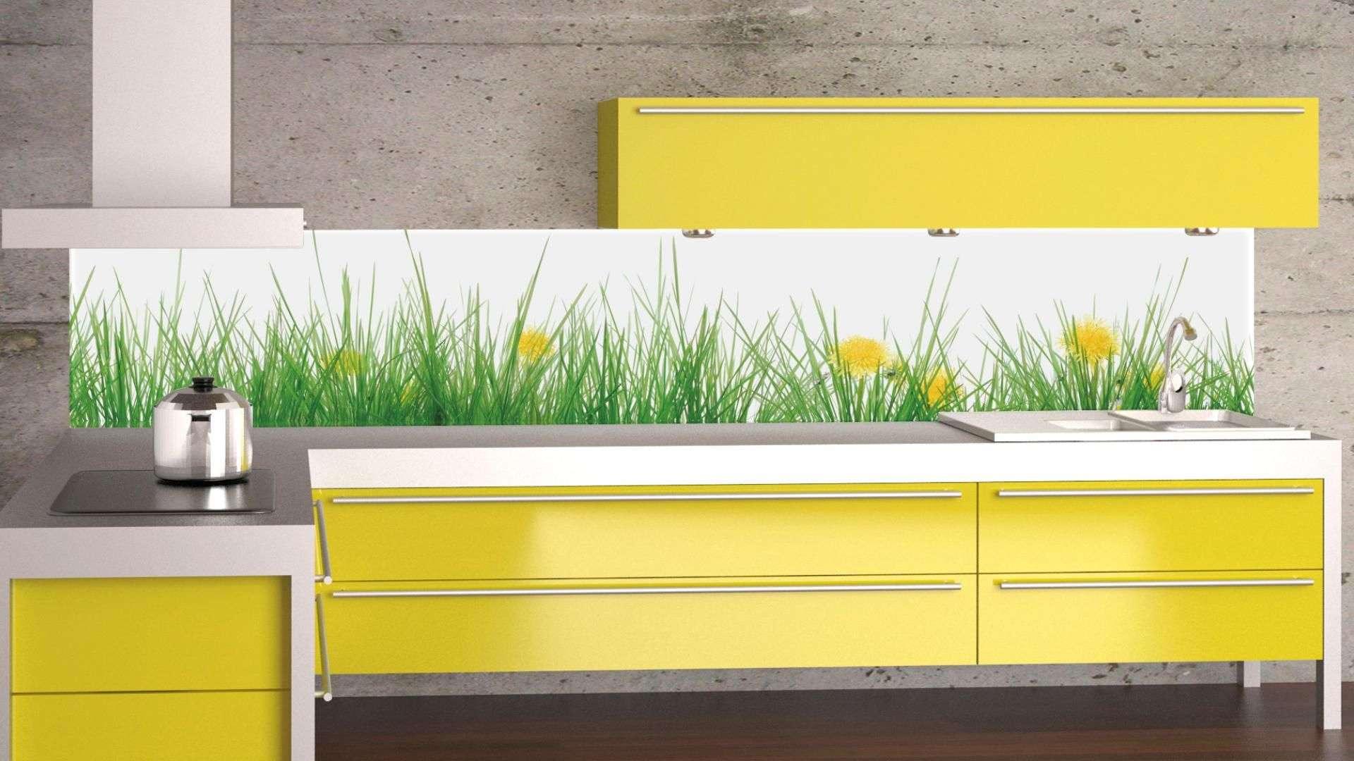 bedruckte Glasrückwand als Spritzschutz in einer gelben Küche