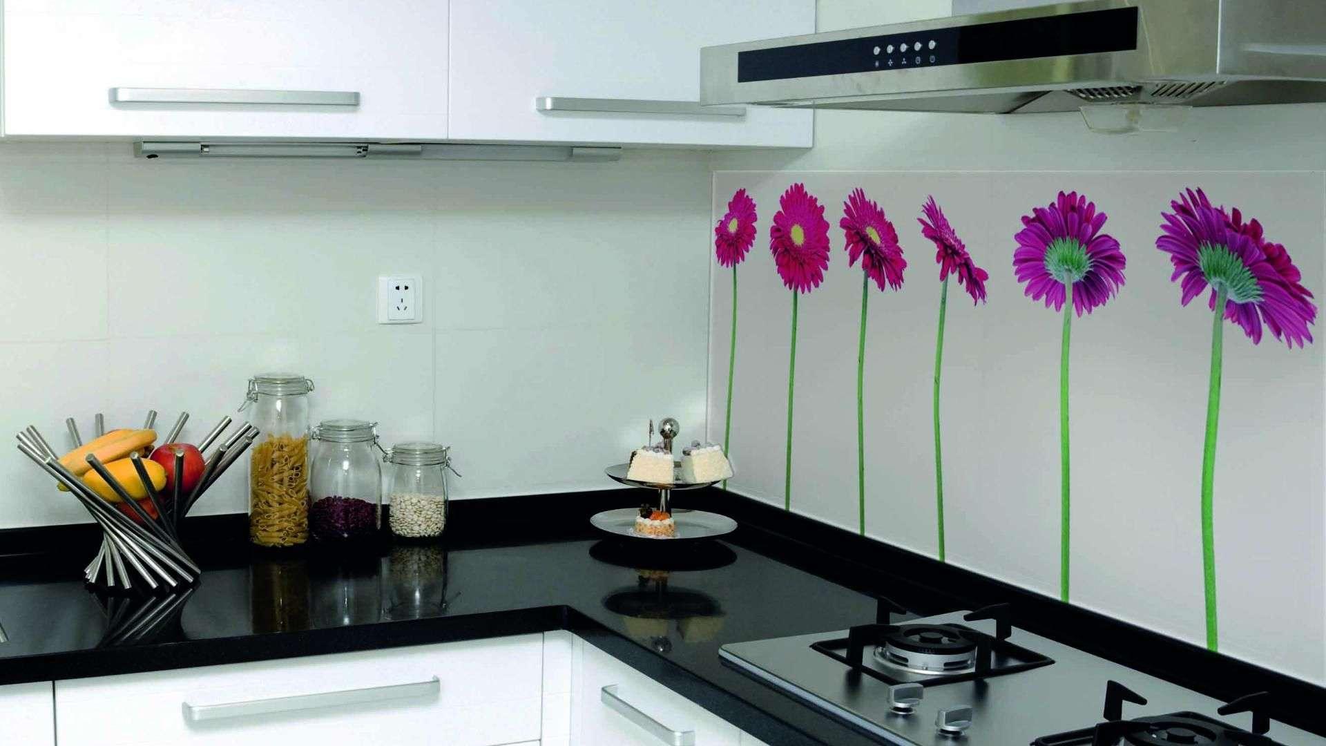 Glasrückwand als Spritzschutz in einer Küche
