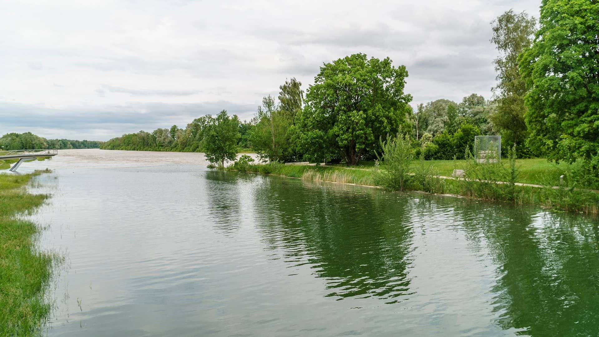Blick auf den Inn mit Bäumen am Ufer