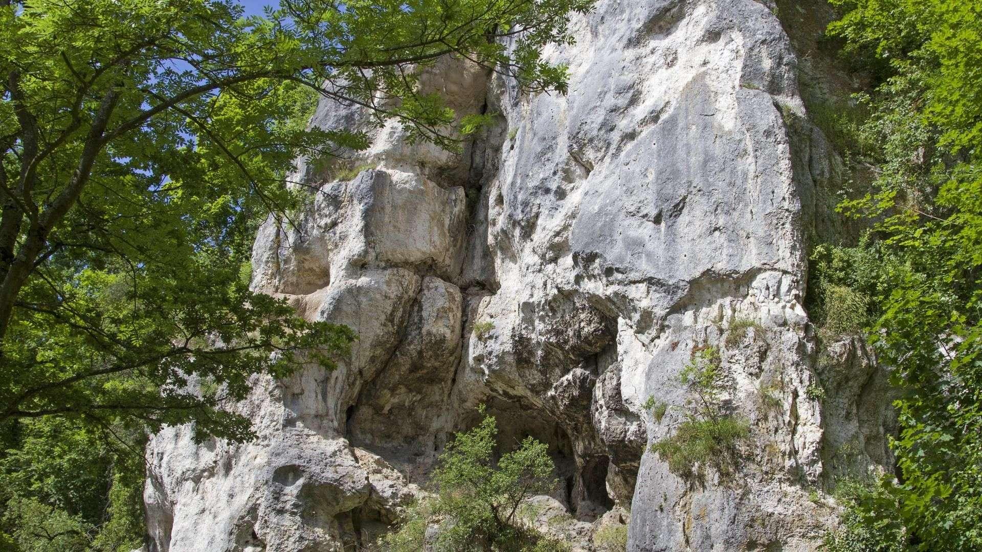 Felsen in Bad Abbach