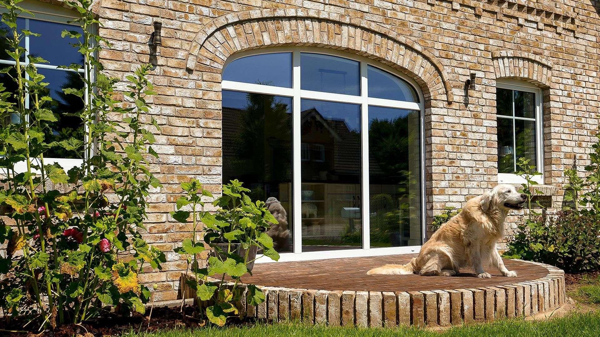 Hund auf einer halbrunden Terrasse mit großen Terrassenfenster mit Rundbogen